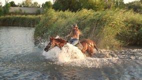 Junges Mädchen springt Galopp in einen See zu Pferd stock video