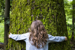 Junges Mädchen, das einen großen Baum im Wald umarmt Stockbild
