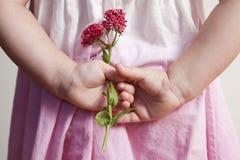 Junges Mädchen, das zurück rosa Blumen hinter ihr hält Lizenzfreie Stockbilder