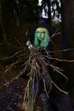 Junges Mädchen mit dem grünem Haar und Besen in der Klage der Hexe in Wald-Halloween-Zeit Stockfotografie