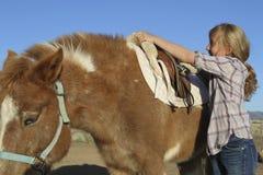 Junges Mädchen-sattelndes Pony Stockfoto