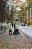 Junges Mutter walkingin die Straße mit einem Spaziergänger und einem Bullterrierhund, hintere Ansicht Spätherbst Jagd Lizenzfreie Stockfotos