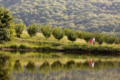 Junges Paar geht entlang das Seeufer Stockfoto