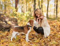 Junges schönes blondes Gehen mit Hund im Herbstpark stockbild
