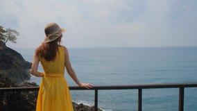 Junges schönes Mädchen auf dem Pier Betrachten des Meeres stock video footage