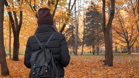 Junges schönes Mädchen, das allein in Herbstpark geht stock footage