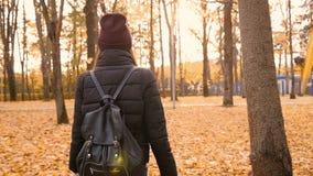 Junges schönes Mädchen, das allein in Herbstpark geht 50 fps stock video
