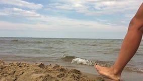 Junges schönes Mädchen geht entlang den sandigen Strand stock footage