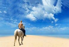 Junges weibliches Reiten ihr Pferd im Meer Stockbilder