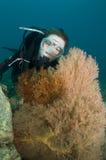 Junges weibliches Unterwasseratemgerättaucherportrait Stockbilder