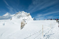 jungfrau Photo stock