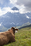 Jungfrau Stock Photo