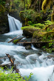 Jungfrau-Nebenfluss fällt in Alaska Lizenzfreies Stockfoto