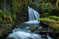 Jungfrau-Nebenfluss fällt in Alaska Stockbild