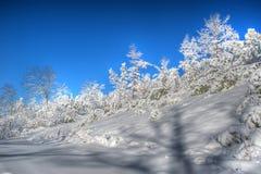 Jungfrau-Schneefälle Stockfoto