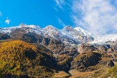 Jungfraujoch del av det alpina snöberget för schweiziska fjällängar Fotografering för Bildbyråer