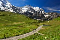 Jungfraujoch. View of Jungfraujoch from Kleine Scheidegg ,Switzerland Royalty Free Stock Image