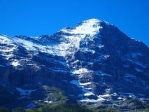 Jungfraujoch y la gama de montañas alpina ajardinan cerca de pueblo de GRINDELWALD en las MONTAÑAS suizas de la belleza en SUIZA Fotografía de archivo libre de regalías