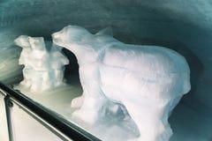 Jungfraujoch, Zwitserland - April 29, 2017: de beren die binnen snijden Royalty-vrije Stock Afbeeldingen