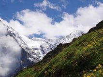 Jungfrauview die Schweiz lizenzfreie stockbilder