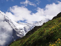 Jungfrauview Svizzera Immagini Stock Libere da Diritti