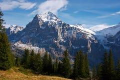 Jungfraw massiv, Schweizer Alpen stockbilder
