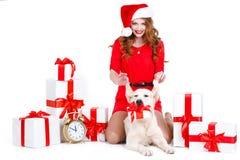 Jungfru och labrador hund med julgåvor Arkivbild