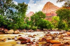 Jungfrulig flod i Zion National Park - Utah USA Royaltyfri Foto