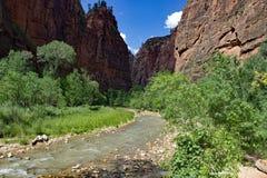 Jungfrulig flod på Zion Natiional Park USA Royaltyfria Foton