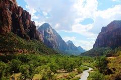 Jungfrulig flod, Zion National Park Fotografering för Bildbyråer