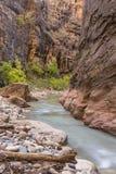 Jungfrulig flodkrökning Royaltyfri Bild