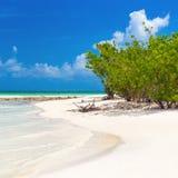 Jungfrulig tropisk strand i Kuba Arkivbilder