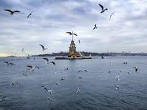 Jungfrutorn i Istanbul Royaltyfria Foton