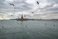 Jungfrutorn i Istanbul Arkivfoton