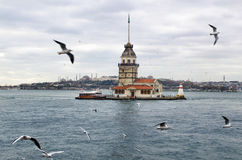 Jungfrutorn i Istanbul Arkivbild