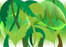 Jungle. Decorative background with elements of tropical vegetation Stock Photography