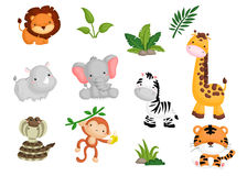 Jungle Animal Royalty Free Stock Photography