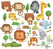 Jungle animal vector set. A jungle animal vector set with many object royalty free illustration