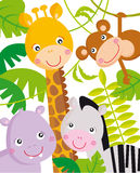 Jungle animals. Cartoon illustration of jungle animals