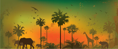 Jungle animals. Vector illustration of silhouettes of animals at jungle Stock Photography