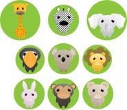 Jungle animals Royalty Free Stock Photos