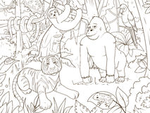 Jungle animals cartoon coloring book vector Royalty Free Stock Photo