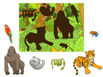Jungle animals cartoon educational game vector Stock Images