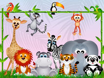 Jungle animals Stock Image