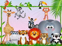 Jungle animals Royalty Free Stock Photo
