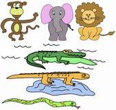 Jungle animals Stock Photos