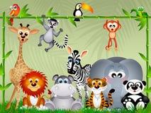 Jungle animals Stock Photography