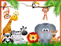 Jungle animals Stock Images