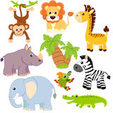 Jungle animals. Lion, elephant, giraffe, monkey, parrot, crocodile, zebra and rhinoceros Royalty Free Stock Photography