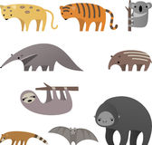 Jungle animals. Stylish cartoon Jungle animals  illustration Stock Photography